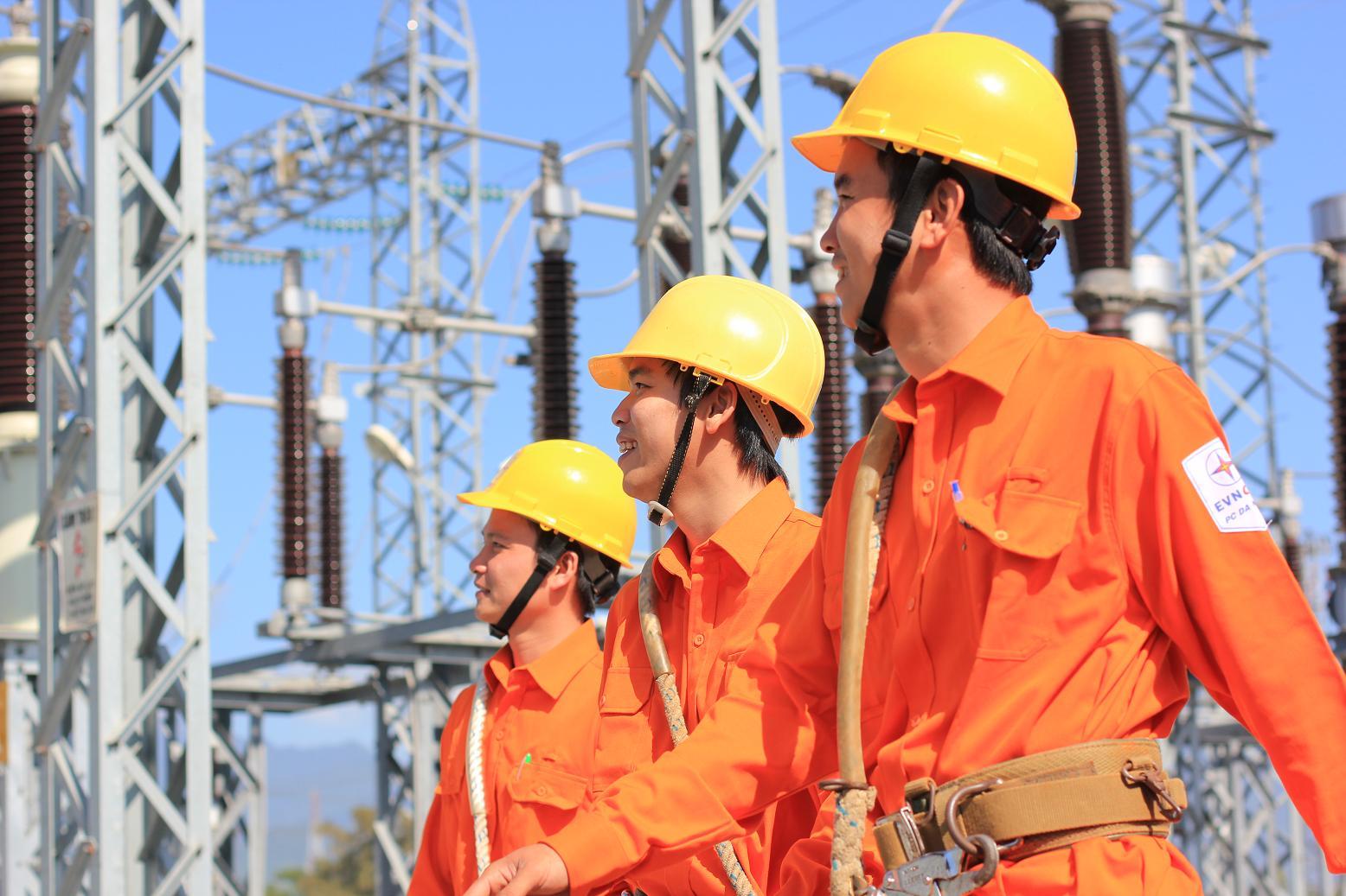 Đến hết năm 2015, vốn điều lệ của Tập đoàn Điện lực Việt Nam là 160.000 tỷ đồng
